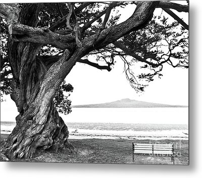 Lone Tree Bench And Volcano Metal Print by Yurix Sardinelly