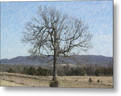 Lone Tree Metal Print by Donna G Smith
