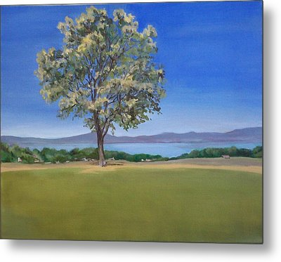 Lone Tree Hill Metal Print by Irene Corey