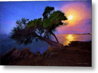 Metal Print featuring the photograph Lone Tree On Pacific Coast Highway At Moonset by John A Rodriguez