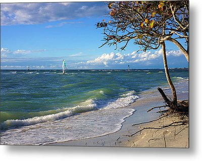 Lone Windsurfer At Wiggins Pass Metal Print by Robb Stan