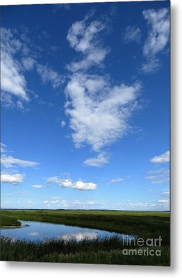 Lonely As A Cloud Metal Print