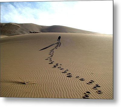 Lonely Hiker In The Gobi Metal Print by Diane Height