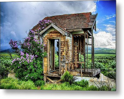 Lonely Lilacs Metal Print