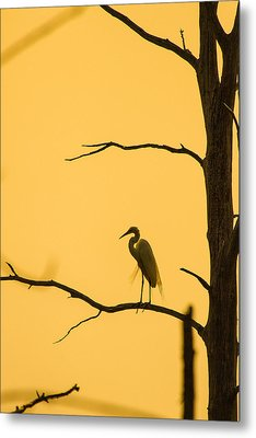 Lonely Silhouette Metal Print