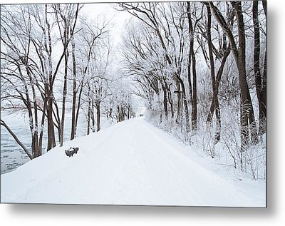 Lonely Snowy Road Metal Print by  Newwwman