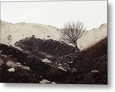 Lonely Tree Metal Print by Anton Popov