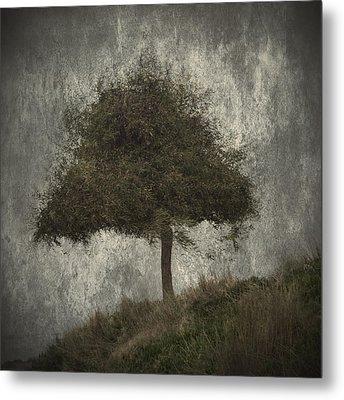 Lonely Tree Metal Print by Stelios Kleanthous
