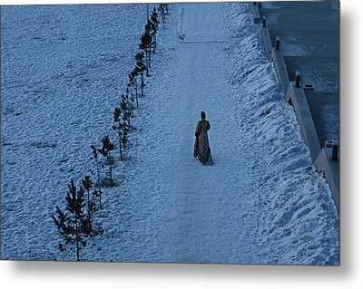 Lonely Walk/tsagaan Sar Metal Print by Diane Height
