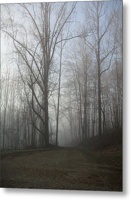 Metal Print featuring the photograph Lonesome Road by Cynthia Lassiter