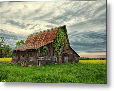 Long Forgotten Metal Print by Donnie Smith