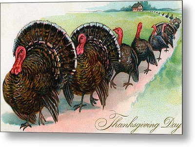 Long Line Of Thanksgiving Turkeys Metal Print by American School