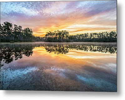 Long Pine Colors Metal Print by Jon Glaser