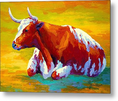 Longhorn Cow Metal Print by Marion Rose