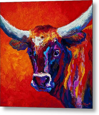Longhorn Steer Metal Print by Marion Rose