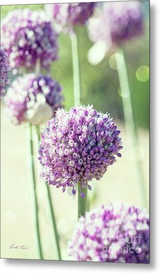 Metal Print featuring the photograph Longing For Summer Days by Linda Lees