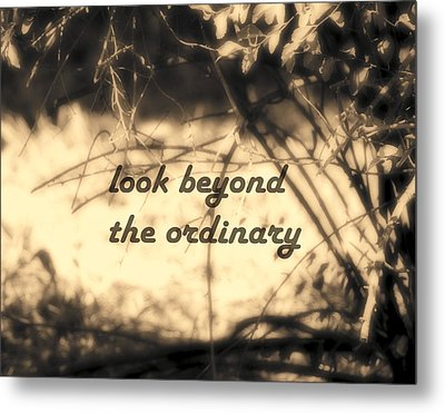 Metal Print featuring the photograph Look Beyond by Ann Powell