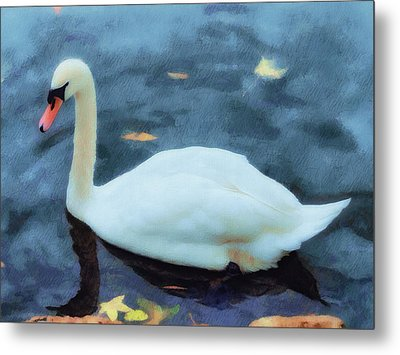 Look For Beauty And You Will Find It Metal Print