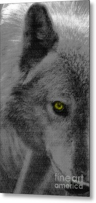 Metal Print featuring the mixed media Look Into My Eye by Debra     Vatalaro