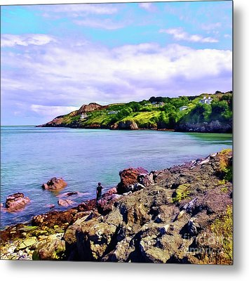 Looking Across Metal Print