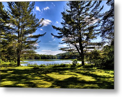 Looking At The Moose River Metal Print by David Patterson