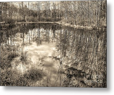 Looking Down Metal Print by Betsy Zimmerli