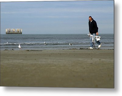 Looking For Worms Metal Print by Jez C Self