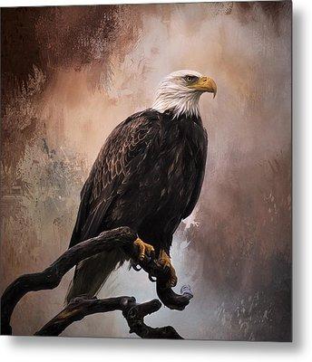 Looking Forward - Eagle Art Metal Print by Jordan Blackstone