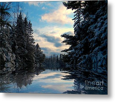 Metal Print featuring the photograph Looking Glass by Elfriede Fulda