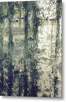 Looking Through The Willow Branches Metal Print by Linda Geiger