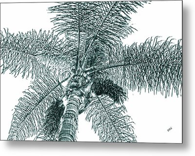 Metal Print featuring the photograph Looking Up At Palm Tree Green by Ben and Raisa Gertsberg