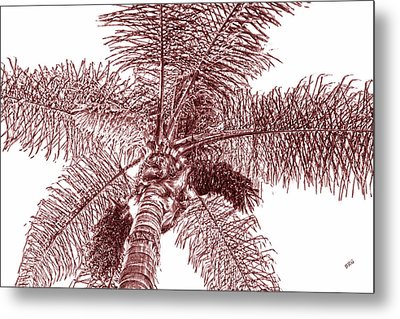 Metal Print featuring the photograph Looking Up At Palm Tree Red by Ben and Raisa Gertsberg