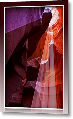 Looking Up Metal Print by Farol Tomson