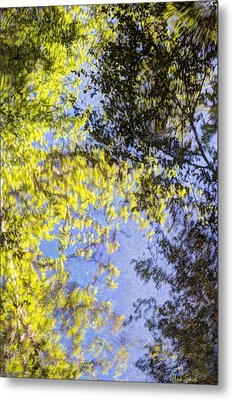 Metal Print featuring the photograph Looking Up Or Down by Heidi Smith