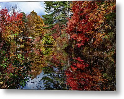 Metal Print featuring the photograph Looking Up The Chocorua River by Jeff Folger