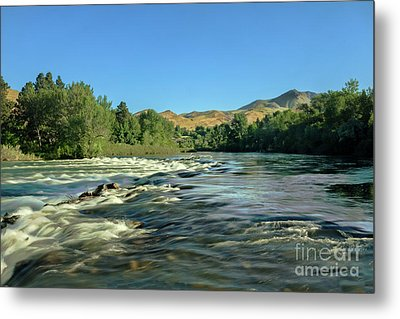Looking Up The Payette Metal Print by Robert Bales