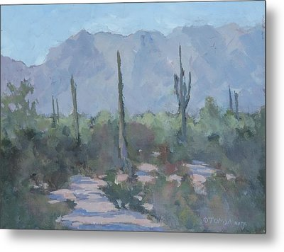 Looking West From Ahwatukee Metal Print by Bill Tomsa