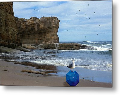 Lost And Found Metal Print by Diane Schuster