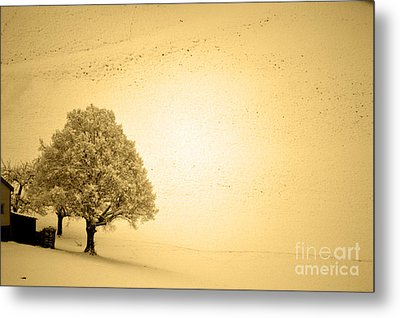 Metal Print featuring the photograph Lost In Snow - Winter In Switzerland by Susanne Van Hulst