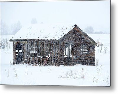 Lost In Winter Metal Print by Mike Dawson