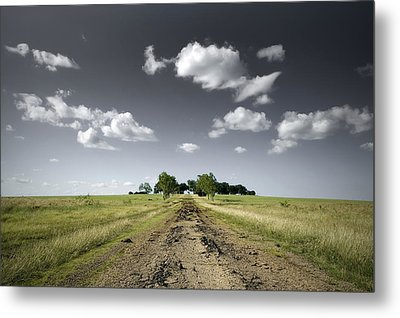 Lost Metal Print by Mike Irwin