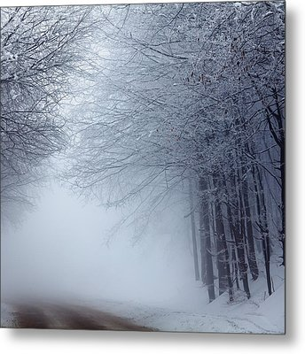Lost Way Metal Print by Evgeni Dinev