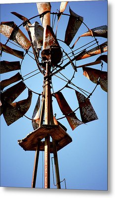 Lost Wind Metal Print by Jame Hayes