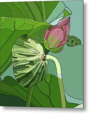 Lotus And Bud Metal Print