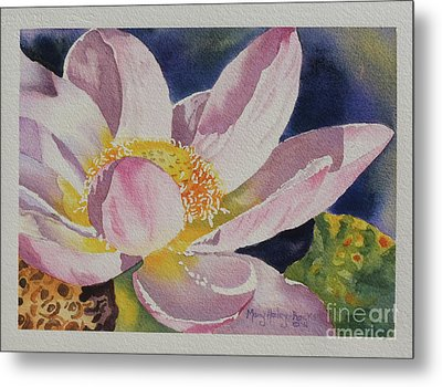 Metal Print featuring the painting Lotus Bloom by Mary Haley-Rocks