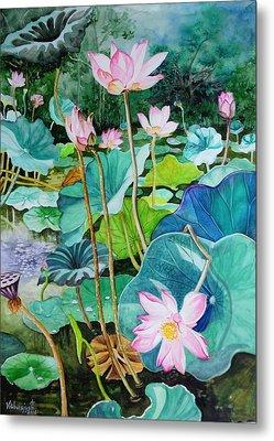 Lotus Pond 1 Metal Print by Vishwajyoti Mohrhoff