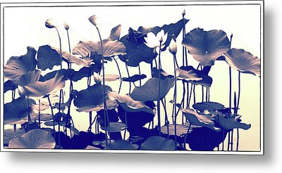Lotus Tapestry Metal Print by Jessica Jenney
