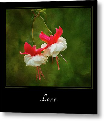 Metal Print featuring the photograph Love 1 by Mary Jo Allen