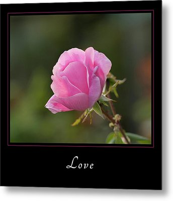 Metal Print featuring the photograph Love 2 by Mary Jo Allen