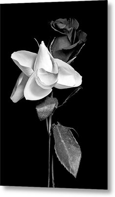 Love In Bloom Metal Print by Elsa Marie Santoro
